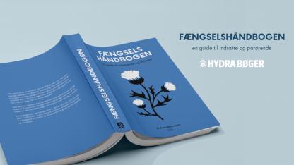 Fængselshåndbogen: En bog med yderst relevante oplysninger om alt fra anholdelse til løsladelse